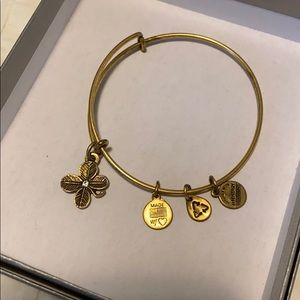 Alex and Ani adjustable bangle